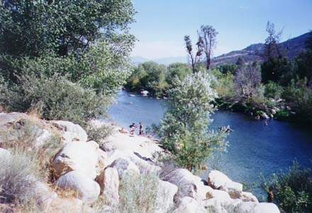 Swimming in the Kern River